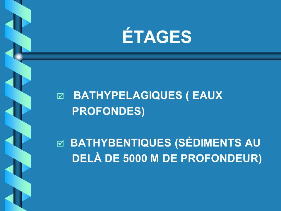 ÉTAGES  BATHYPELAGIQUES ( EAUX PROFONDES)  BATHYBENTIQUES (SÉDIMENTS AU DELÀ DE 5000 M DE PROFONDEUR)