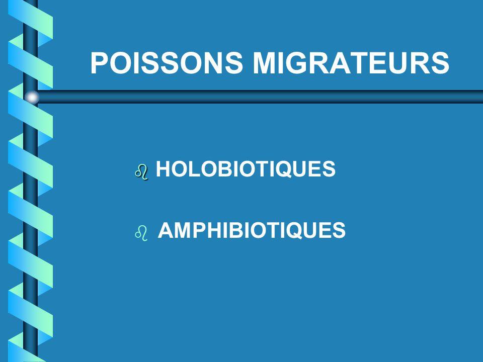POISSONS MIGRATEURS   HOLOBIOTIQUES b b AMPHIBIOTIQUES