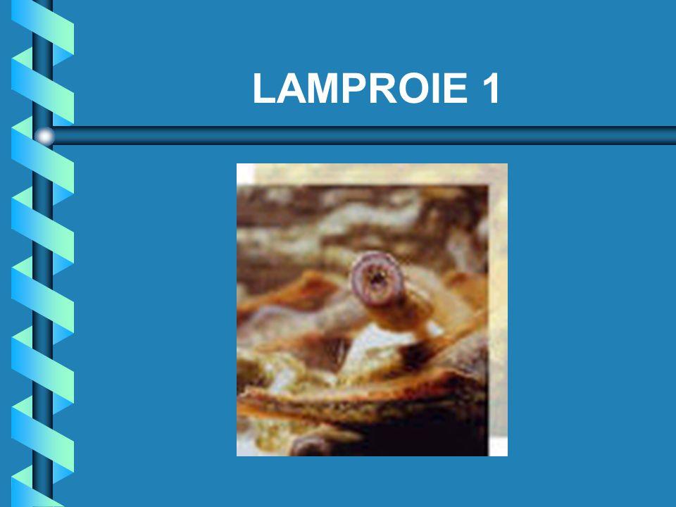 LAMPROIE 1
