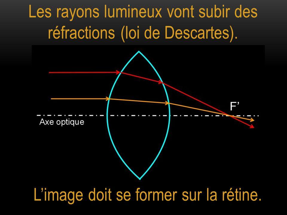 Les rayons lumineux vont subir des réfractions (loi de Descartes). L'image doit se former sur la rétine. Axe optique