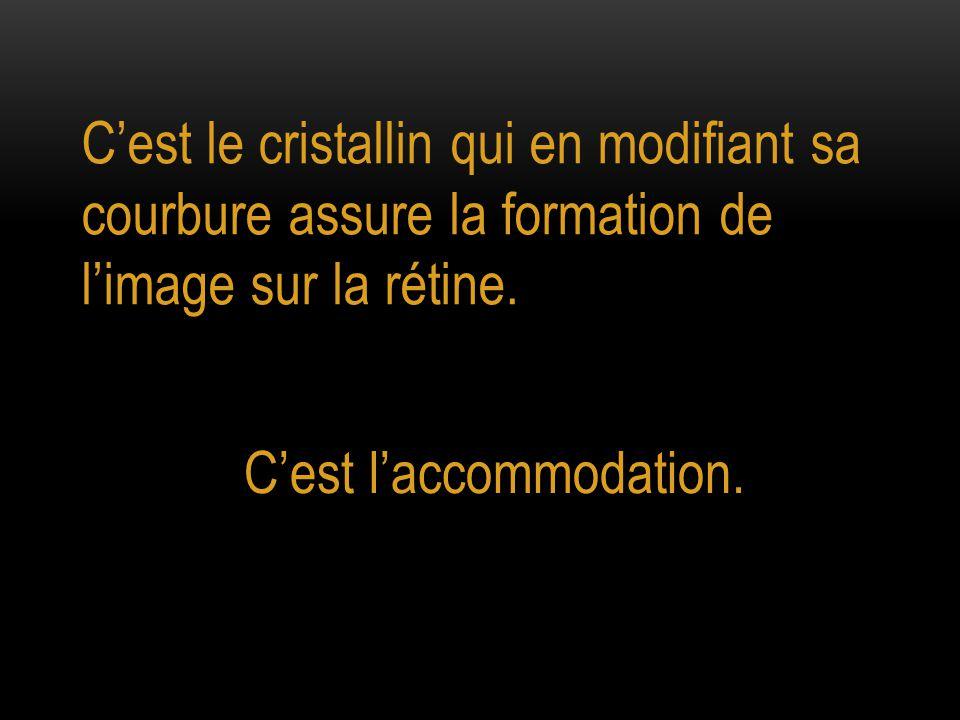 C'est le cristallin qui en modifiant sa courbure assure la formation de l'image sur la rétine. C'est l'accommodation.