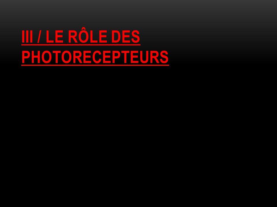 III / LE RÔLE DES PHOTORECEPTEURS