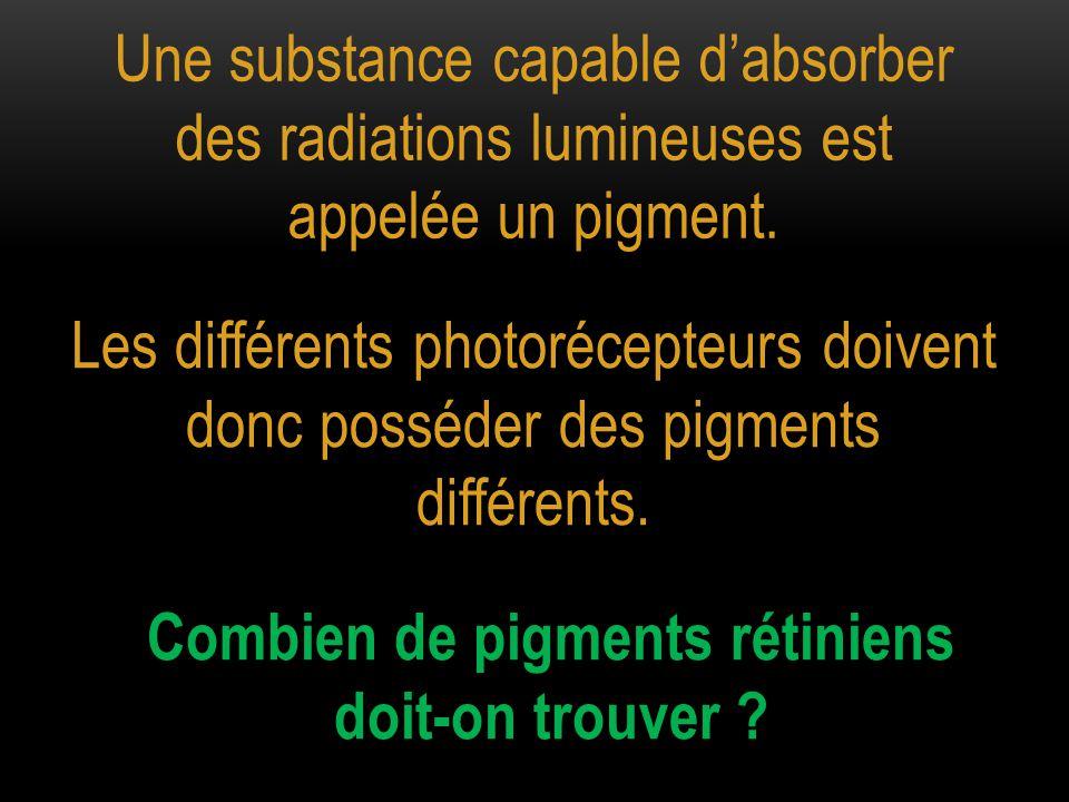 Une substance capable d'absorber des radiations lumineuses est appelée un pigment. Les différents photorécepteurs doivent donc posséder des pigments d