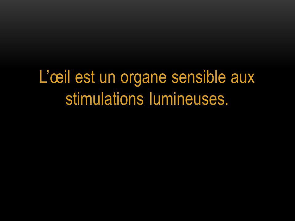 L'œil est un organe sensible aux stimulations lumineuses.