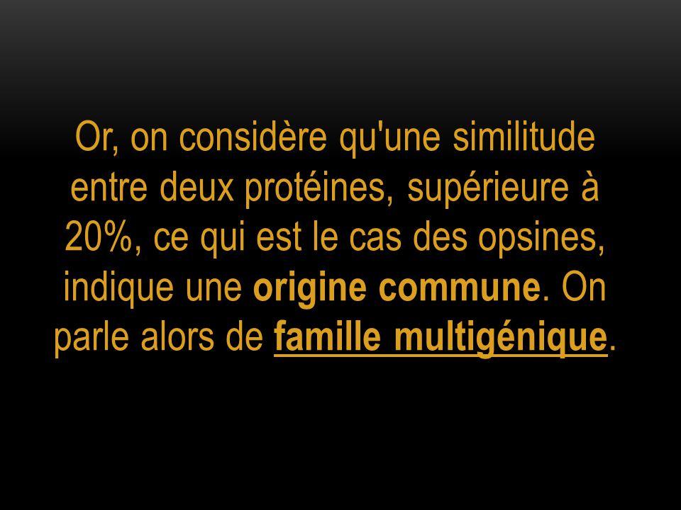 Or, on considère qu'une similitude entre deux protéines, supérieure à 20%, ce qui est le cas des opsines, indique une origine commune. On parle alors