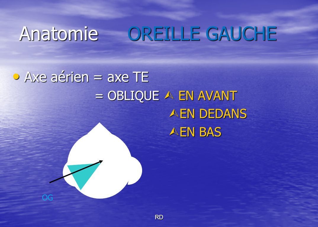 Anatomie OREILLE GAUCHE Axe aérien = axe TE Axe aérien = axe TE = OBLIQUE  EN AVANT = OBLIQUE  EN AVANT  EN DEDANS  EN BAS OG