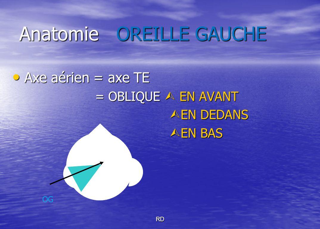 RD Anatomie OREILLE GAUCHE Axe aérien = axe TE Axe aérien = axe TE = OBLIQUE  EN AVANT = OBLIQUE  EN AVANT  EN DEDANS  EN BAS OG