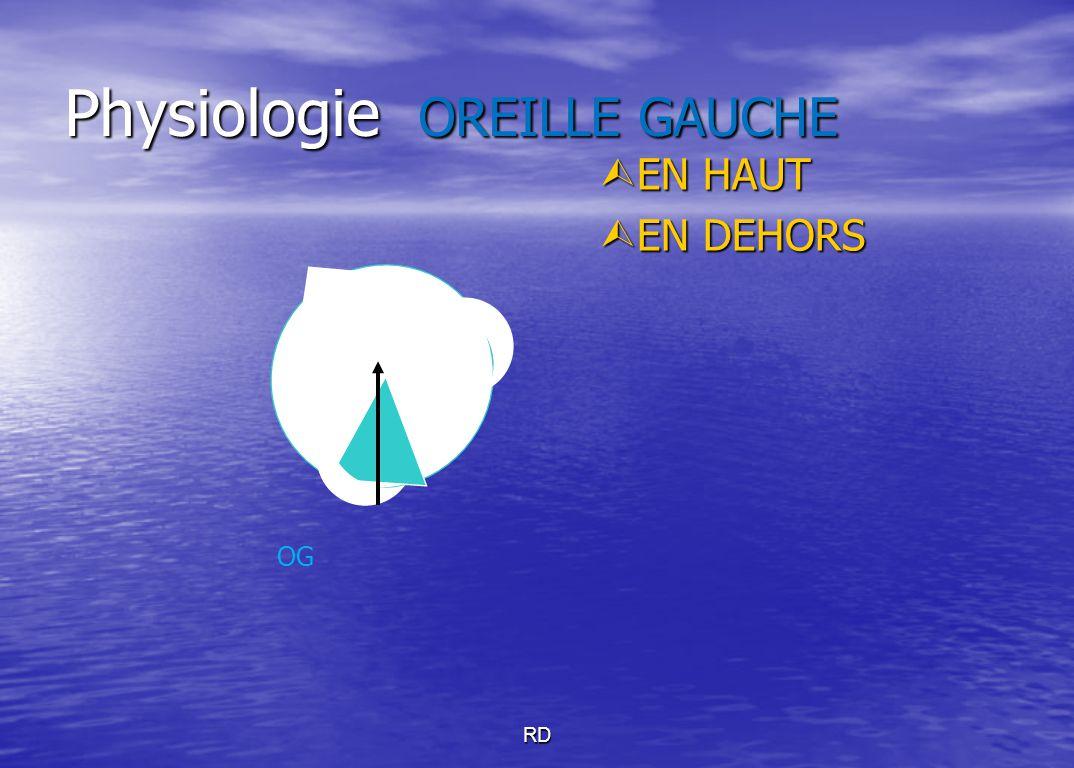 RD Physiologie OREILLE GAUCHE  EN HAUT  EN DEHORS OG