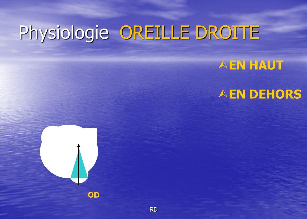 Physiologie OREILLE DROITE RD  EN HAUT  EN DEHORS OD