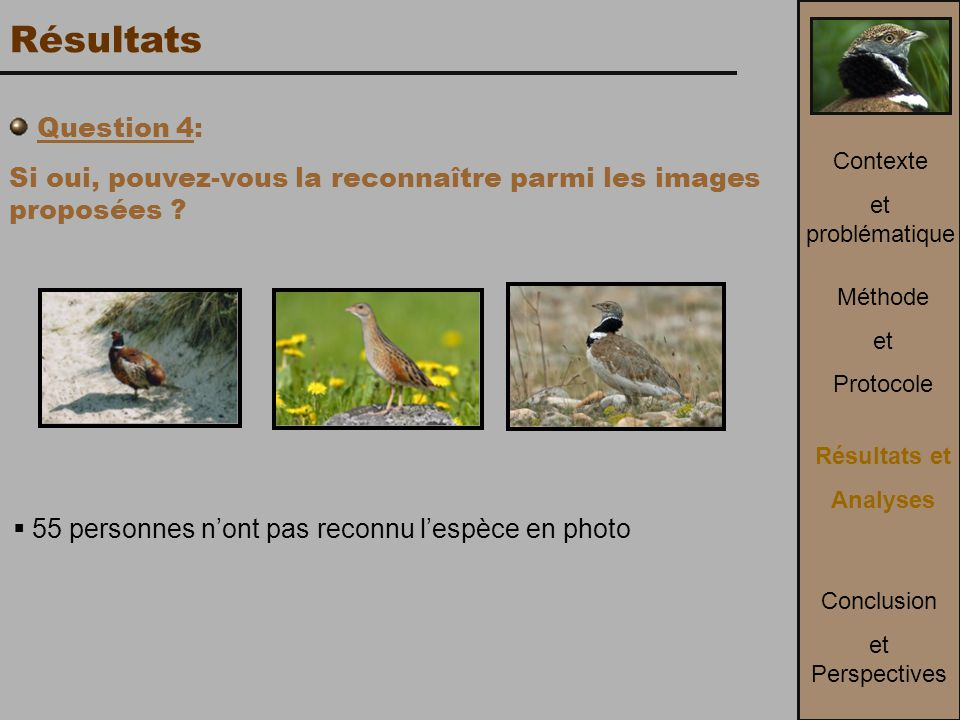 Méthode et Protocole Contexte et problématique Conclusion et Perspectives Résultats et Analyses  55 personnes n'ont pas reconnu l'espèce en photo Question 4: Si oui, pouvez-vous la reconnaître parmi les images proposées .