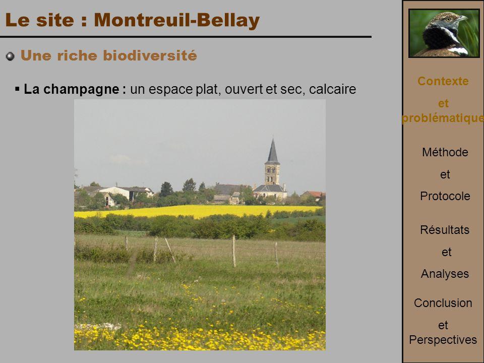 Le site : Montreuil-Bellay  La champagne : un espace plat, ouvert et sec, calcaire Contexte et problématique Méthode et Protocole Conclusion et Perspectives Résultats et Analyses Une riche biodiversité