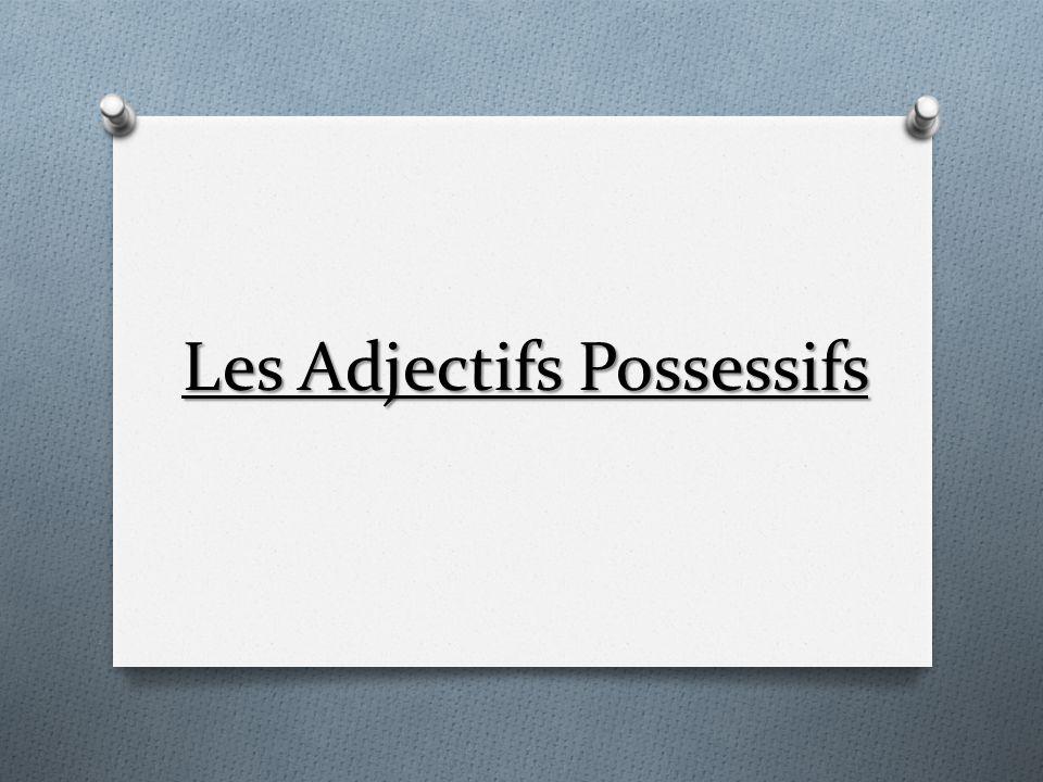 Caractèristiques O L adjectif possessif apporte des informations de genre, de nombre, et de personne (information concernant le possesseur).