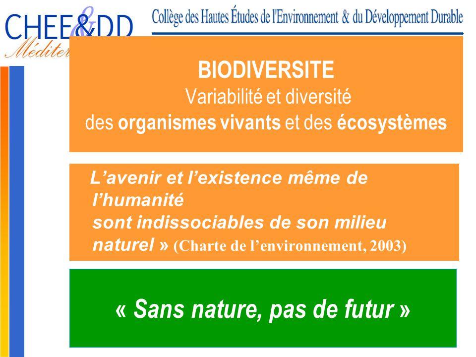 Gilbert ISOARD - 060-7676-309 - gilbert. isoard @ numericable. fr www.cheeddmed.org BIODIVERSITE Variabilité et diversité des organismes vivants et de