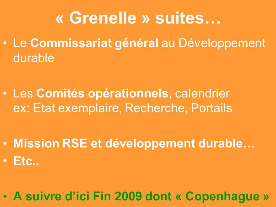 Gilbert ISOARD - 060-7676-309 - gilbert. isoard @ numericable. fr www.cheeddmed.org « Grenelle » suites… Le Commissariat général au Développement dura