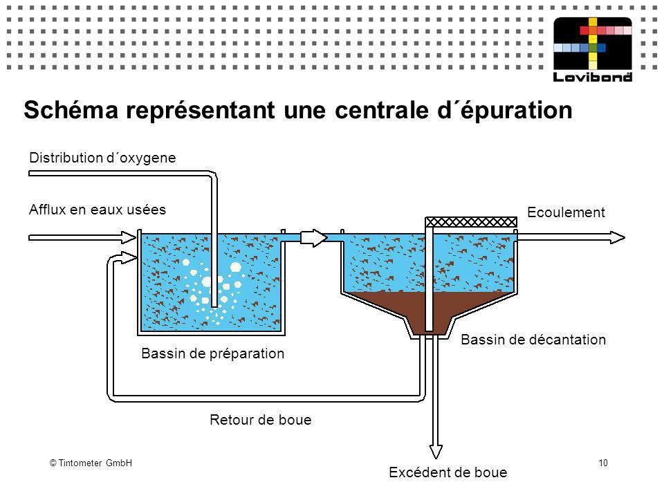 © Tintometer GmbH 10 Schéma représentant une centrale d´épuration Distribution d´oxygene Afflux en eaux usées Bassin de préparation Bassin de décantat