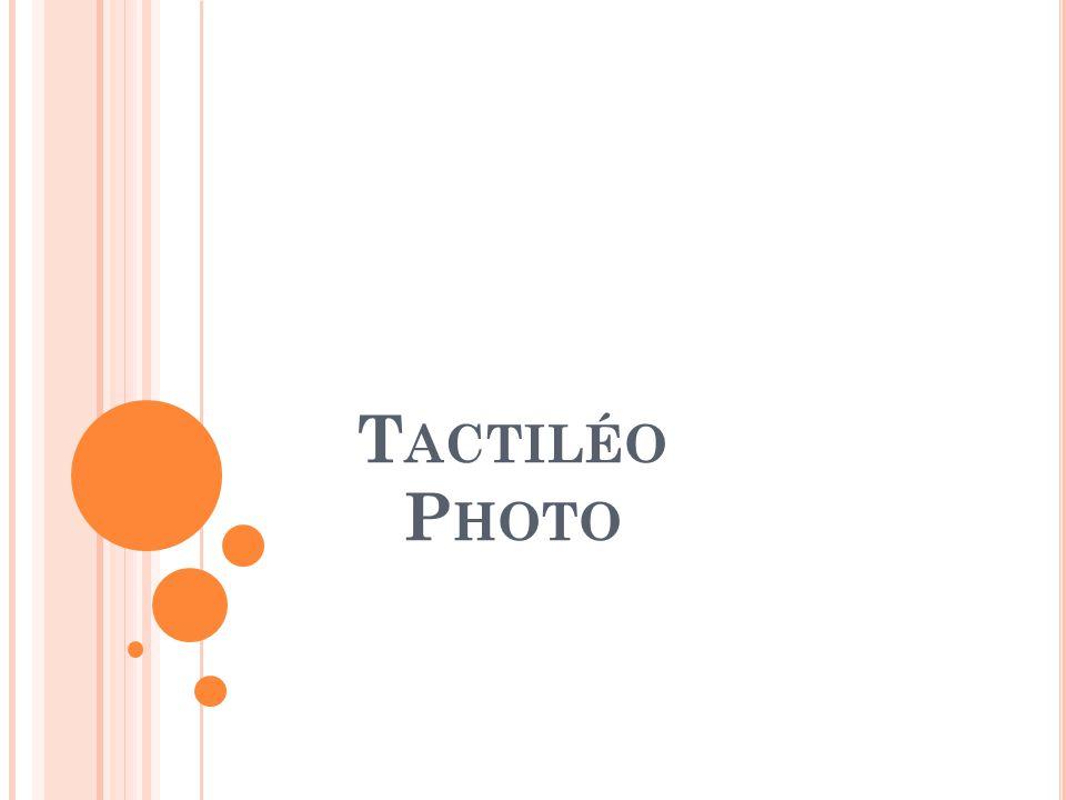 D ESCRIPTION RAPIDE L'application Tactiléo Photo est une interface facilitant le rangement d'un groupe de photos Elle permet d'organiser les images dans des dossiers Le tri peut s'effectuer à partir d'une carte SD, d'une clé USB ou du dossier « Images Publiques » de la table