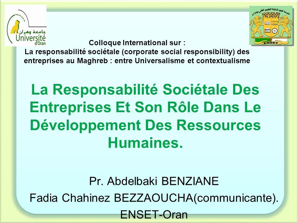 Plan Introduction Definition de la RSE Problématique et Hypothèses Enjeux et critiques RSE et développement des RH Conclusion