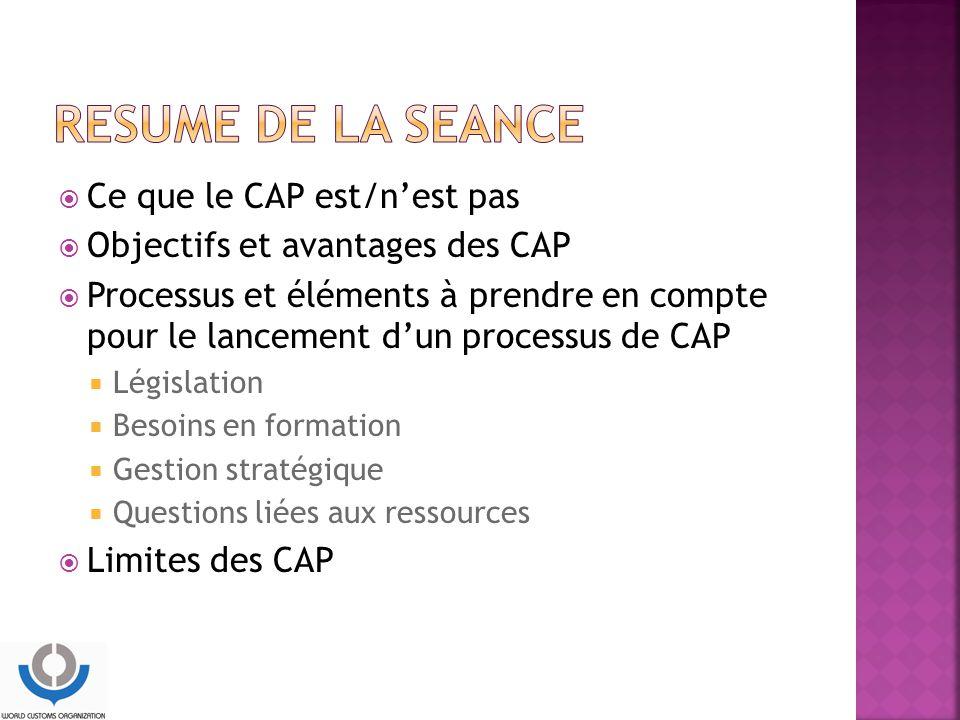  Ce que le CAP est/n'est pas  Objectifs et avantages des CAP  Processus et éléments à prendre en compte pour le lancement d'un processus de CAP  Législation  Besoins en formation  Gestion stratégique  Questions liées aux ressources  Limites des CAP
