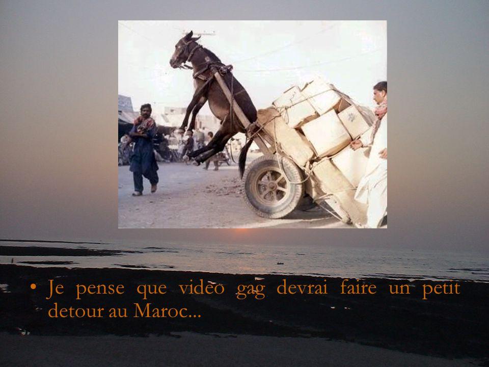 Je pense que video gag devrai faire un petit detour au Maroc...