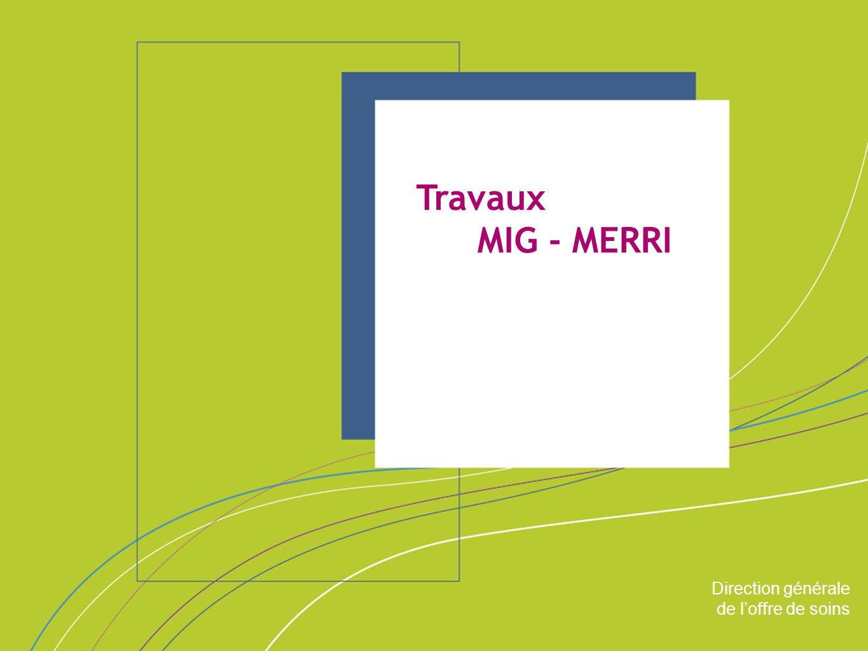 Direction générale de l'offre de soins ORGANISATION & MISSIONS Direction générale de l'offre de soins Travaux MIG - MERRI