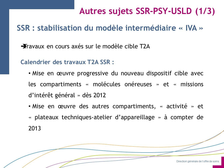 Direction générale de l'offre de soins Autres sujets SSR-PSY-USLD (1/3) SSR : stabilisation du modèle intermédiaire « IVA »  Travaux en cours axés sur le modèle cible T2A Calendrier des travaux T2A SSR : Mise en œuvre progressive du nouveau dispositif cible avec les compartiments « molécules onéreuses » et « missions d'intérêt général » dès 2012 Mise en œuvre des autres compartiments, « activité » et « plateaux techniques-atelier d'appareillage » à compter de 2013