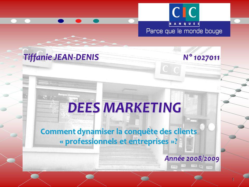 1 Tiffanie JEAN-DENIS N° 1027011 Tiffanie JEAN-DENIS N° 1027011 DEES MARKETING Année 2008/2009 Comment dynamiser la conquête des clients « professionnels et entreprises »