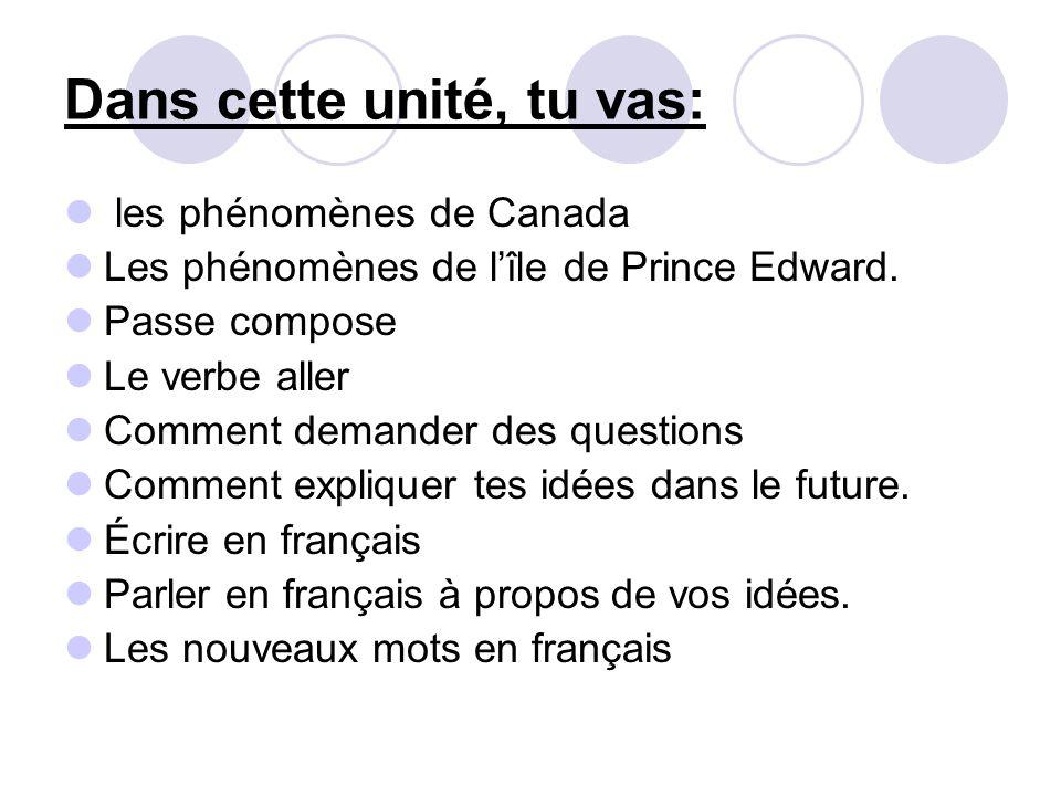 Dans cette unité, tu vas: les phénomènes de Canada Les phénomènes de l'île de Prince Edward.