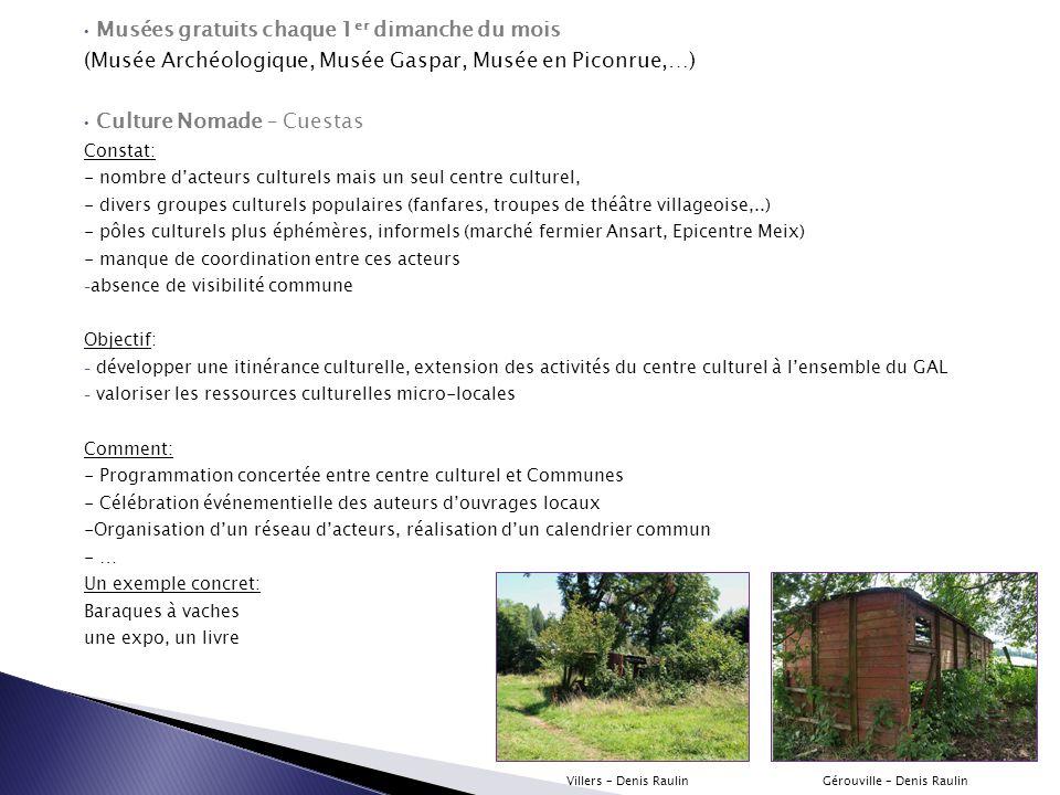 Musées gratuits chaque 1 er dimanche du mois (Musée Archéologique, Musée Gaspar, Musée en Piconrue,…) Culture Nomade – Cuestas Constat: - nombre d'act