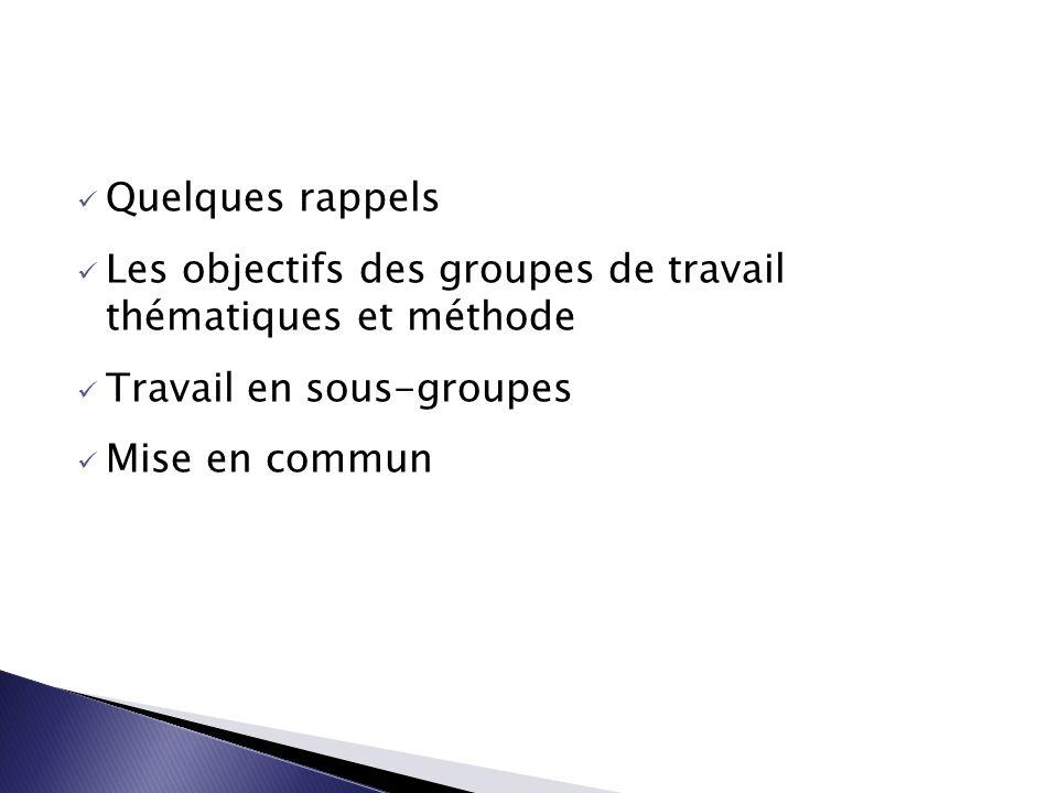 Quelques rappels Les objectifs des groupes de travail thématiques et méthode Travail en sous-groupes Mise en commun