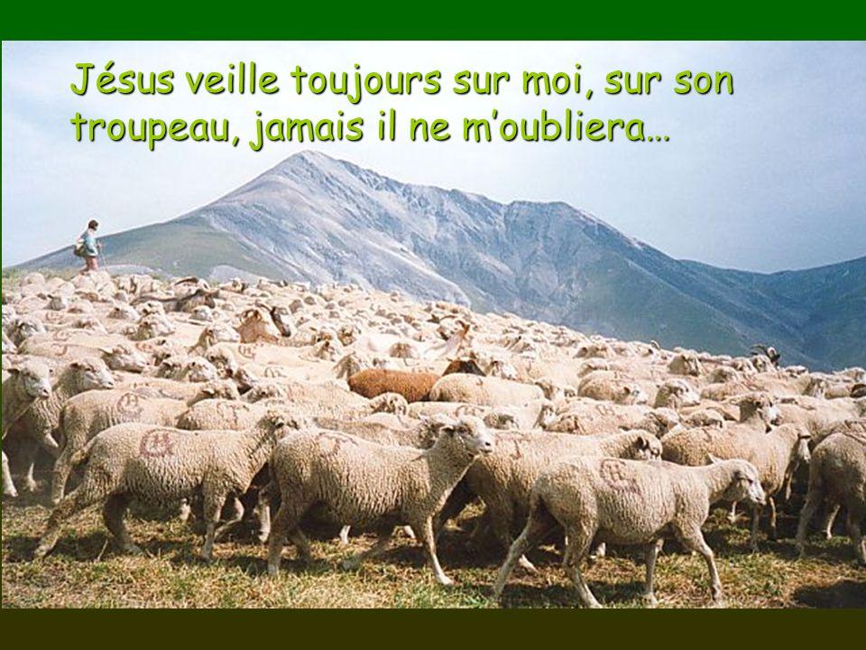 Jésus veille toujours sur moi, sur son troupeau, jamais il ne m'oubliera…