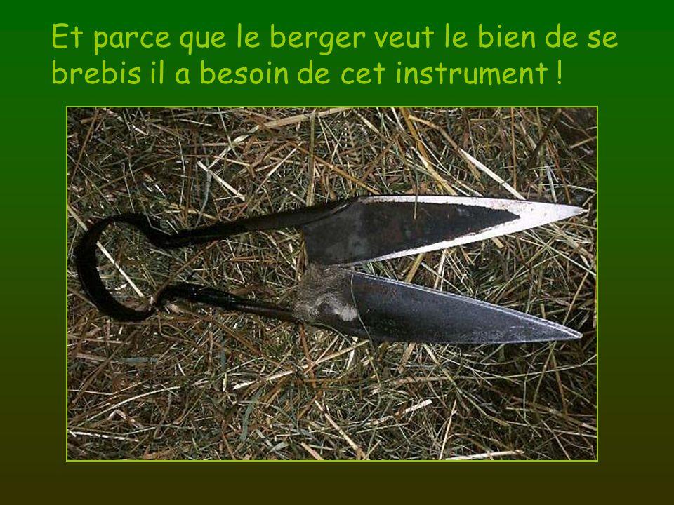 Et parce que le berger veut le bien de se brebis il a besoin de cet instrument !