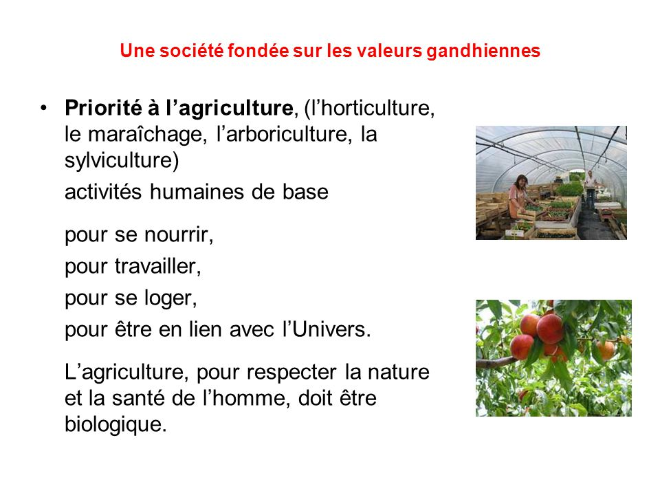 Une société fondée sur les valeurs gandhiennes Priorité à l'agriculture, (l'horticulture, le maraîchage, l'arboriculture, la sylviculture) activités humaines de base pour se nourrir, pour travailler, pour se loger, pour être en lien avec l'Univers.