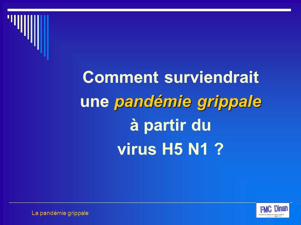 Comment surviendrait pandémie grippale une pandémie grippale à partir du virus H5 N1 ? La pandémie grippale