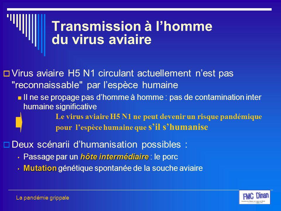  Virus aviaire H5 N1 circulant actuellement n'est pas