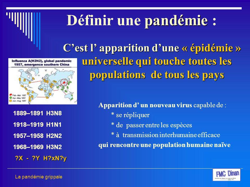 C'est l' apparition d'une « épidémie » universelle qui touche toutes les populations de tous les pays Apparition d' un nouveau virus capable de : * se
