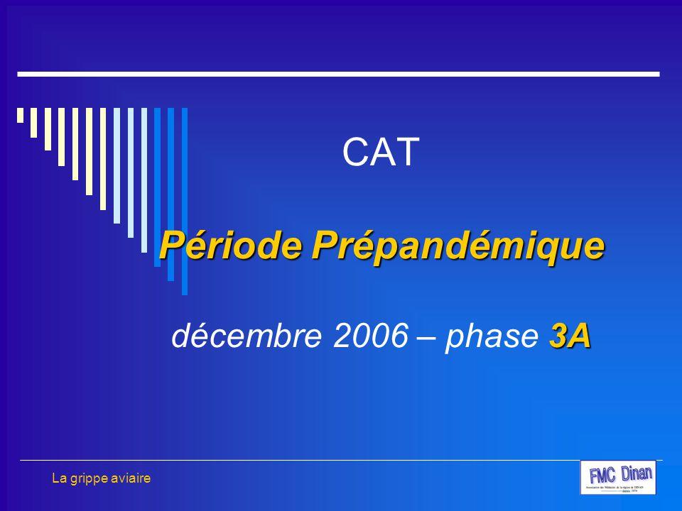 Période Prépandémique 3A CAT Période Prépandémique décembre 2006 – phase 3A La grippe aviaire