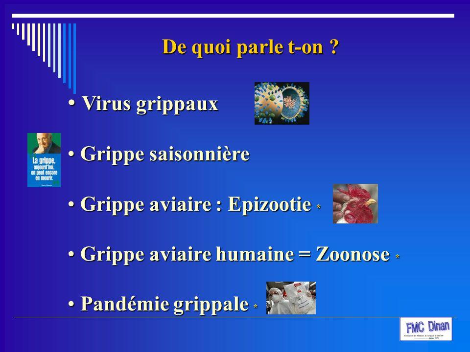 De quoi parle t-on ? Virus grippaux Virus grippaux Grippe saisonnière Grippe saisonnière Grippe aviaire : Epizootie * Grippe aviaire : Epizootie * Gri