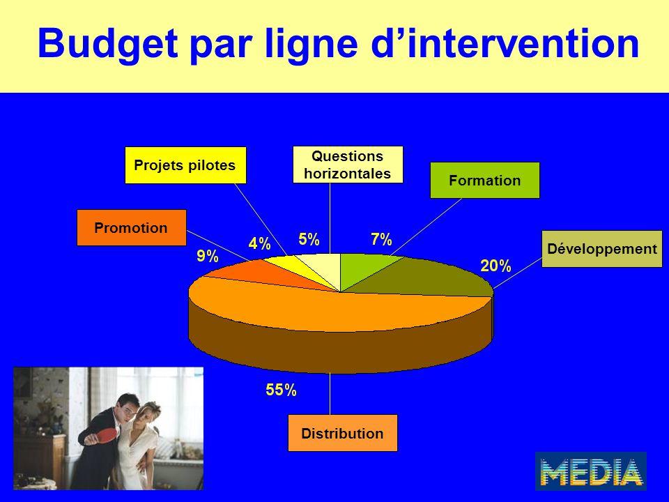 Budget par ligne d'intervention Distribution Promotion Projets pilotes Formation Développement Questions horizontales