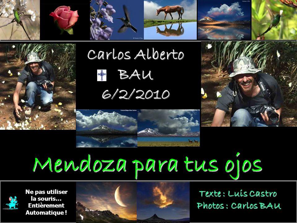 Carlos Alberto BAU 6/2/2010 En sa mémoire Ne pas utiliser la souris… Entièrement Automatique .