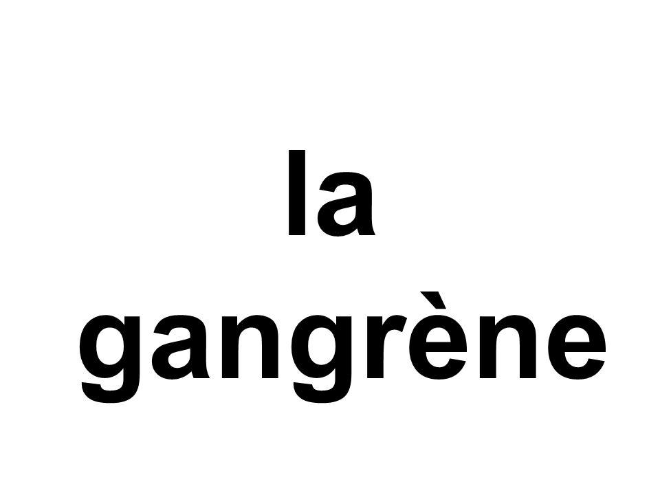 garnir