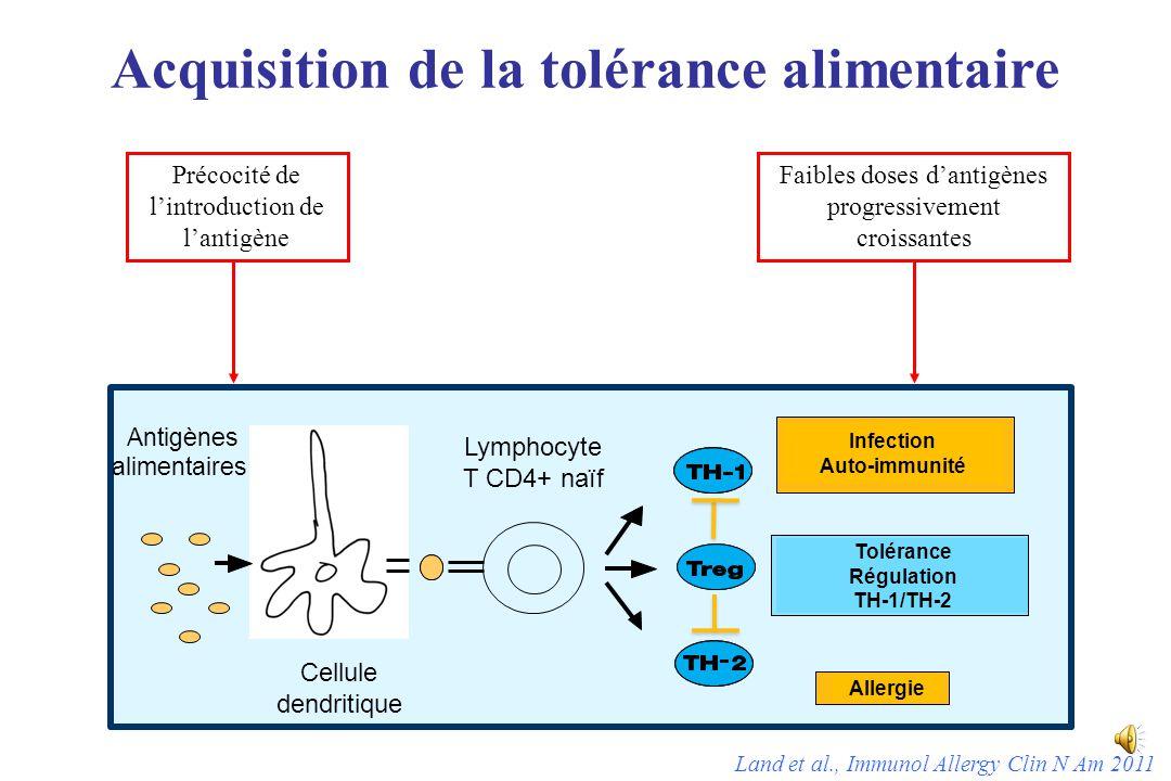 Acquisition de la tolérance alimentaire Antigènes alimentaires Cellule dendritique Lymphocyte T CD4+ naïf Allergie Tolérance Régulation TH-1/TH-2 Infection Auto-immunité Précocité de l'introduction de l'antigène Faibles doses d'antigènes progressivement croissantes Land et al., Immunol Allergy Clin N Am 2011