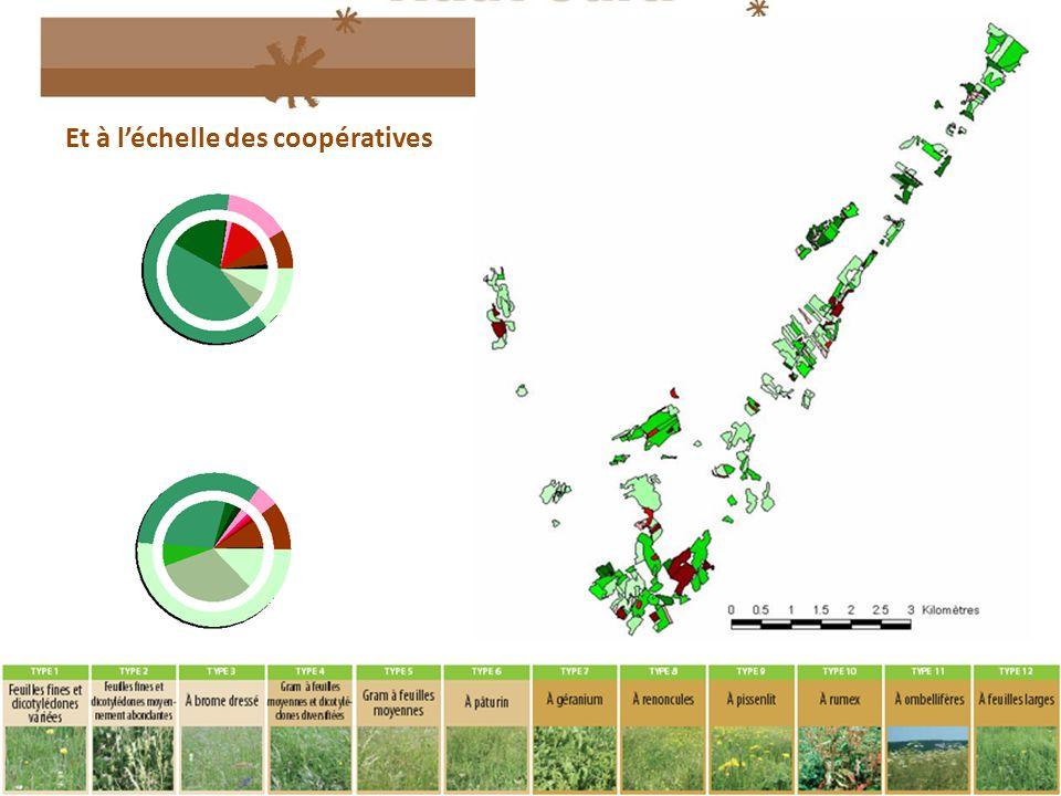 Les Automnales 2011 – Agrapole 7 décembre Et à l'échelle des coopératives