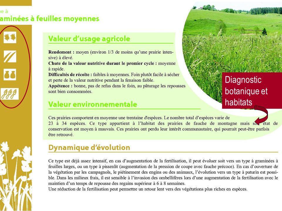 Diagnostic botanique et habitats