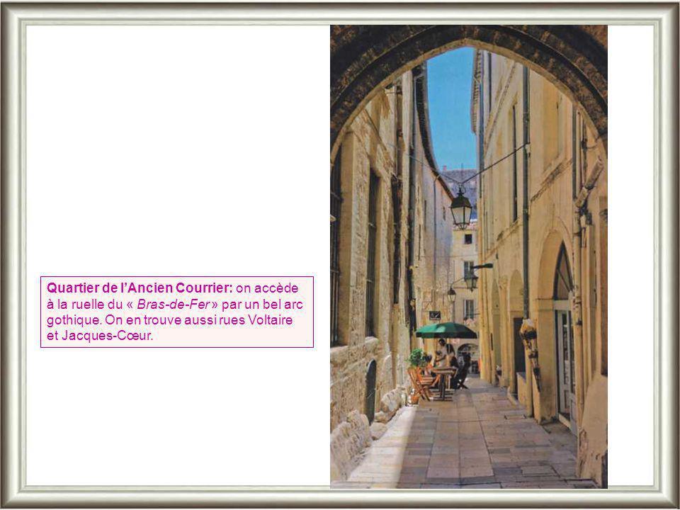 L'Hôtel du marquis de Montcalm. A remarquer: la colonne centrale évidée de l'escalier en colimaçon à balustres qui sert aussi de monte-charge. La facu