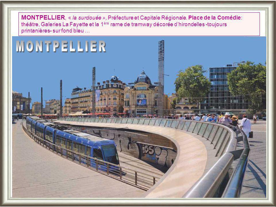 MONTPELLIER, « la surdouée », Préfecture et Capitale Régionale.