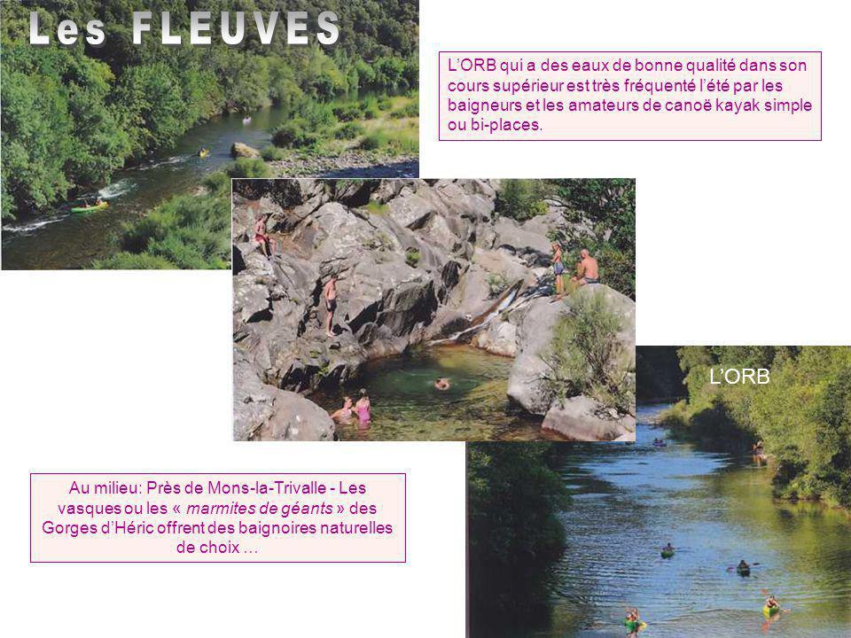 Le Moulin de Bagnols Nombre d'ingénieurs en hydraulique firent des propositions au 19 e s pour alimenter Béziers en eau potable à l'aide d'une machine