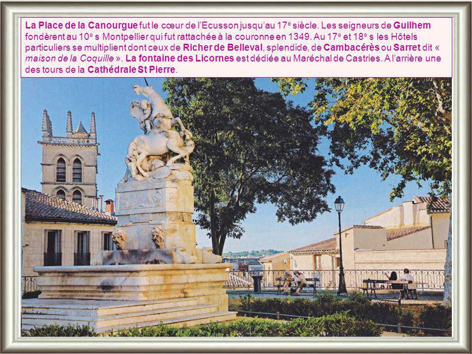 Ci-contre: La vue arrière de l'église permet de mieux découvrir les harmonieuses proportions du chevet, l'élégance des pentes de toitures et ses massifs renforts languedociens Le cloître.