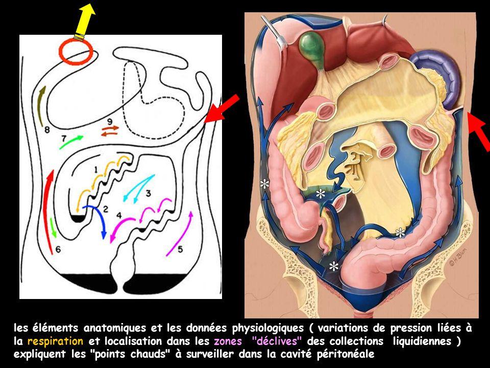 les éléments anatomiques et les données physiologiques ( variations de pression liées à la respiration et localisation dans les zones