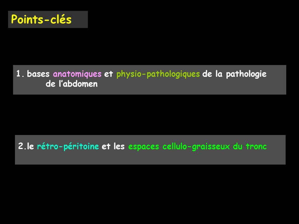Points-clés 2.le rétro-péritoine et les espaces cellulo-graisseux du tronc 1.bases anatomiques et physio-pathologiques de la pathologie de l'abdomen