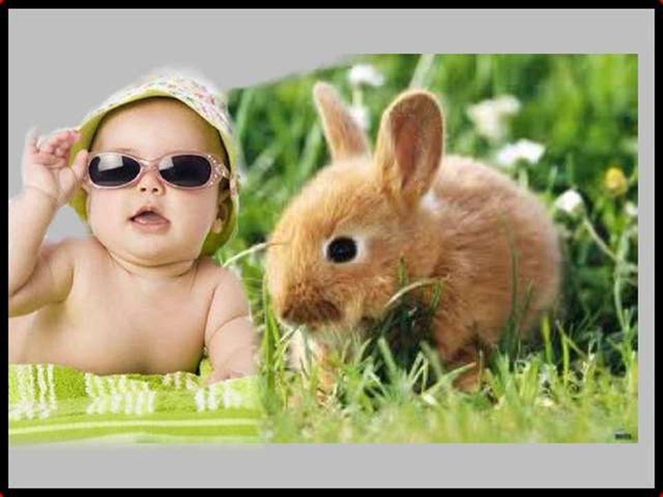Salut ! Au moins vous, vous me regardez, tandis que l'autre derrière ses lunettes de star !!!!!!!